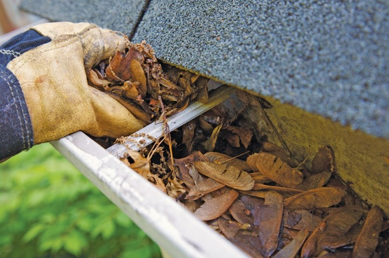 Maintaining Roof Drainage Systems Go With Your Gutter The New Jersey Cooperator The Condo Hoa Co Op Monthly