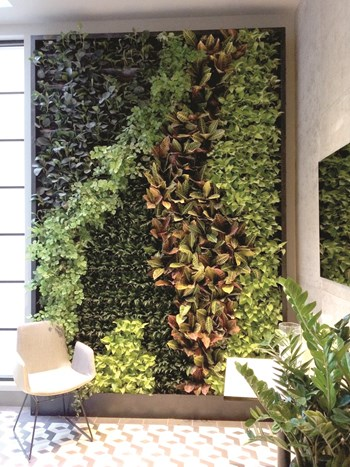 A Green Wall In Residential E Is Like Having Both An Indoor Garden And Piece Of Art All Rolled Into One You Don T Even Have To Travel Far